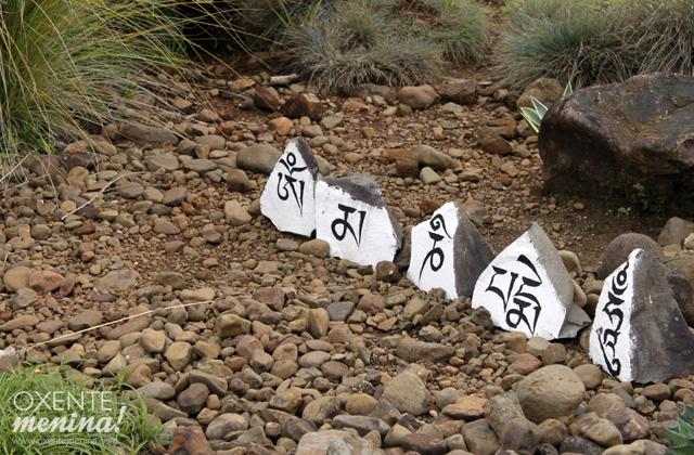 templo-budista-tres-coroas-12