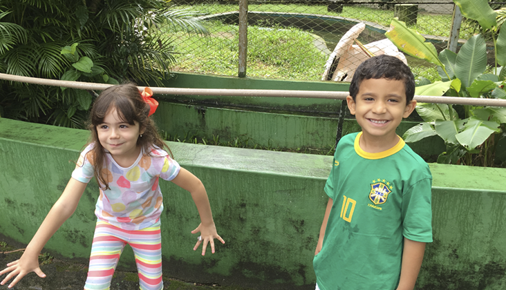 pelicano zoo recife